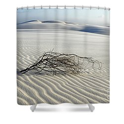Sands Of Time Brazil Shower Curtain by Bob Christopher