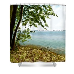 Shower Curtain featuring the painting Sandusky Bay by Shawna Rowe