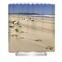 Sandy Beach On Pacific Ocean In Canada Shower Curtain by Elena Elisseeva