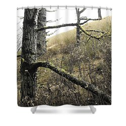 Sandy Hillside Shower Curtain by Adria Trail