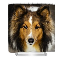 Sandy The Perfect Model Shower Curtain