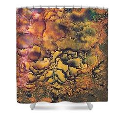 Sandy's  Artwork Shower Curtain