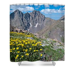 Shower Curtain featuring the photograph Sangre De Cristos Crestone Peak And Wildflowers by Cascade Colors