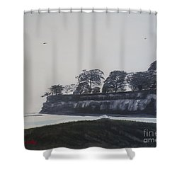 Santa Barbara Shoreline Park Shower Curtain