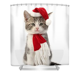 Santa Cat Shower Curtain by Greg Cuddiford