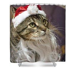 Santa Cat Shower Curtain