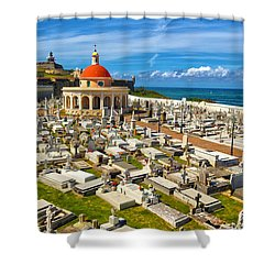 Shower Curtain featuring the photograph Santa Maria Magdalena De Pazzis Cemetery  by Mitch Cat