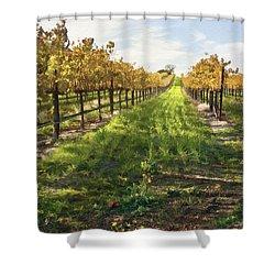 Santa Maria Vineyard Shower Curtain by Sharon Foster