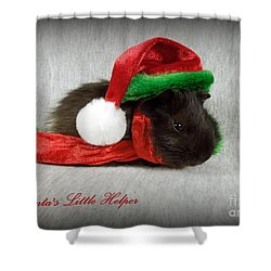 Santa's Little Helper Shower Curtain by Renee Trenholm