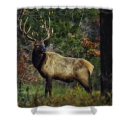 Satellite Bull Along Tree Line Shower Curtain by Michael Dougherty