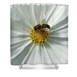 Shower Curtain featuring the photograph Satin Sheets by Linda Shafer