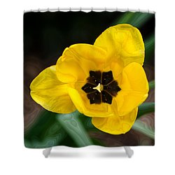 Satin Tulip Shower Curtain by Lois Bryan