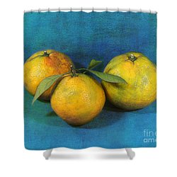 Satsumas Shower Curtain by Judi Bagwell