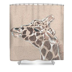 Savannah Shower Curtain