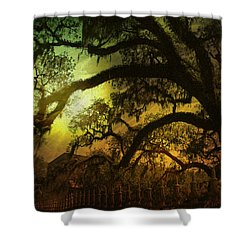 Savannah Ga Spanish Moss-featured In Best Blank Greeting Cards And Harmony And Happiness Groups Shower Curtain by EricaMaxine  Price
