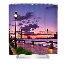 Savannah River Bridge Shower Curtain