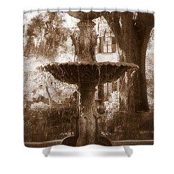 Savannah Romance Shower Curtain by Carol Groenen