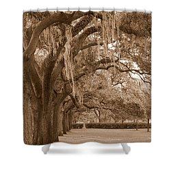 Savannah Sepia - Emmet Park Shower Curtain by Carol Groenen