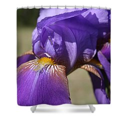 Shower Curtain featuring the photograph Say Ahhhh by Cathy Harper