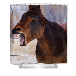 Say Ahhhh Shower Curtain