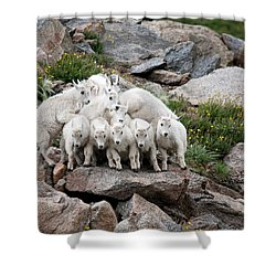 Shower Curtain featuring the photograph Say Cheese by Jim Garrison