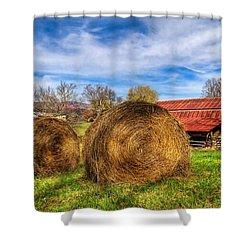 Scarecrow's Dream Shower Curtain by Debra and Dave Vanderlaan