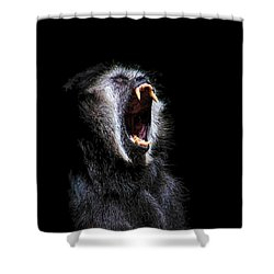 Scary Black Monkey Vicious Fanged Teeth Shower Curtain by Tracie Kaska