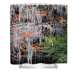 Scattered Rust Shower Curtain by Lana Trussell