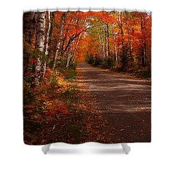 Scenic Maple Drive Shower Curtain