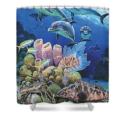 Scenic Route Re006 Shower Curtain by Carey Chen