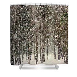 Scenic Snowfall Shower Curtain by Christina Rollo