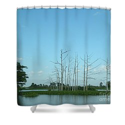 Shower Curtain featuring the photograph Scenic Swamp Cypress Trees by Joseph Baril