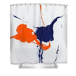School Colors Shower Curtain