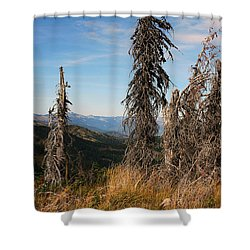 Schweitzer Mountain 2 Shower Curtain