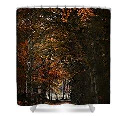 Shower Curtain featuring the photograph Scottish Woodland Walk by Liz  Alderdice