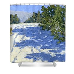 Scrub Oak Shadows Shower Curtain