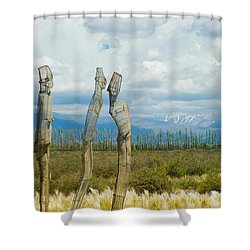 Sculpture In The Andes Shower Curtain