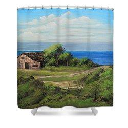 Sea Breeze Shower Curtain by Remegio Onia