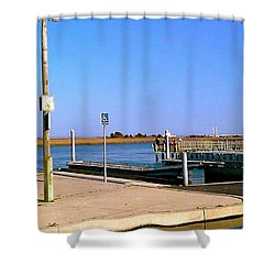 Sea Gulls Watching Over The Wetlands Shower Curtain by Amazing Photographs AKA Christian Wilson