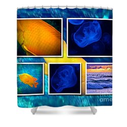 Sea Jelly Fish Shower Curtain by Susan Garren