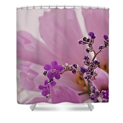 Shower Curtain featuring the photograph Sea Lavender Macro  by Sandra Foster