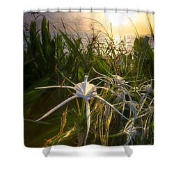 Sea Lily Shower Curtain by Debra and Dave Vanderlaan
