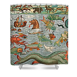 Sea Monsters 1544 Shower Curtain by Photo Researchers