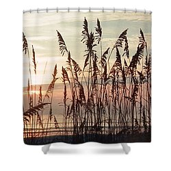 Spectacular Sea Oats At Sunrise Shower Curtain by Belinda Lee