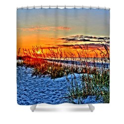 Sea Oats At Sunrise Shower Curtain
