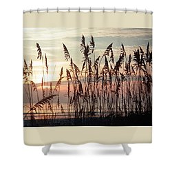 Fabulous Blue Sea Oats Sunrise Shower Curtain