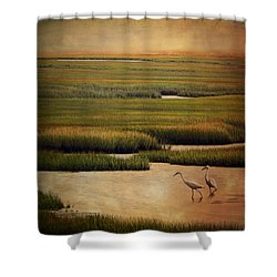 Sea Of Grass Shower Curtain by Lianne Schneider