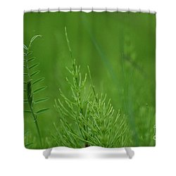 Shower Curtain featuring the photograph Sea Of Green by Bianca Nadeau