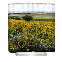 Sea Of Sunflowers Shower Curtain