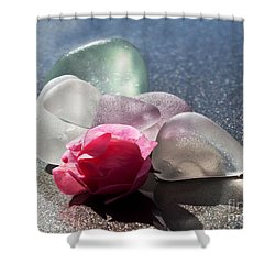 Sea Rose Shower Curtain by Barbara McMahon
